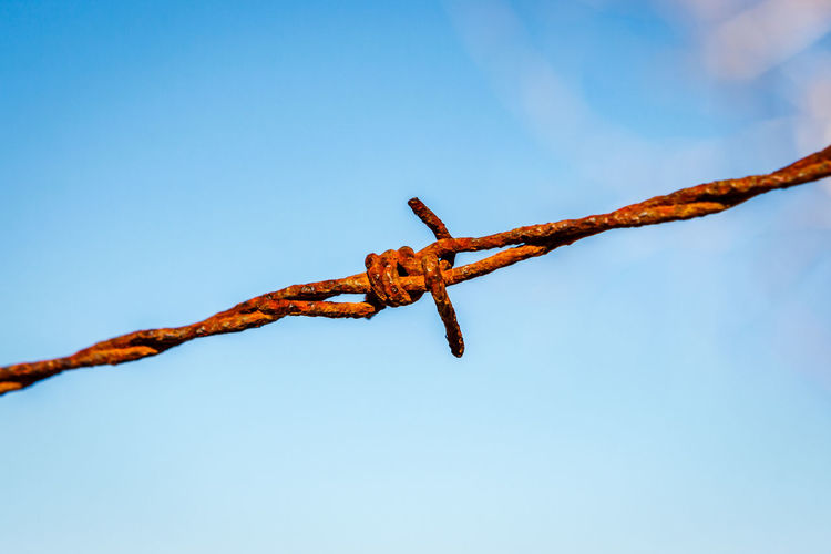 Close-up of barbed wire against blue sky