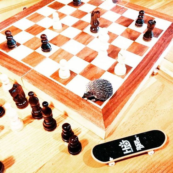 Коворкинг вместе с @skovsky , @s3m , ежиком и скейтом🙈🎶 Trueburgerbar Trueburger Coworking коворкинг Шахматы Chess ежик Hedgehog ёж скейт скейтборд Skateboard Blackandwhite Chessboard шахматнаядоска Printl_net Btflkiev