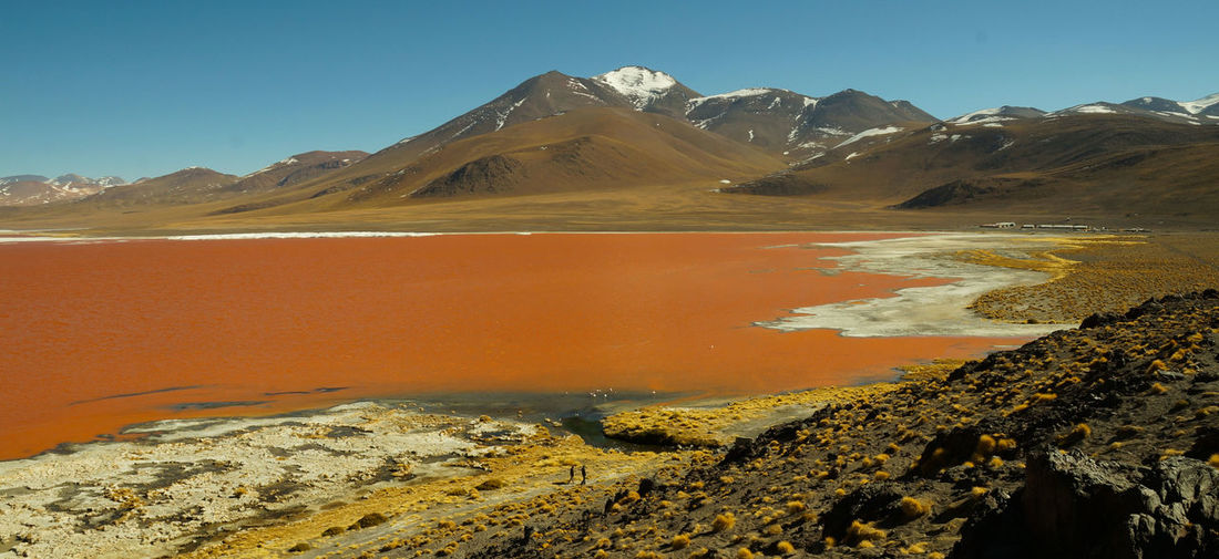 Red Lake at Salar de Uyuni. Bolivia Arid Climate Beauty In Nature Bolivia Uyuni Day Desert Geology Landscape Mountain Mountain Range Nature No People Outdoors Physical Geography Red Lagoon Red Lake Salar De Uyuni Salt - Mineral Scenics Sky South America Tranquil Scene Tranquility Travel Destinations Water
