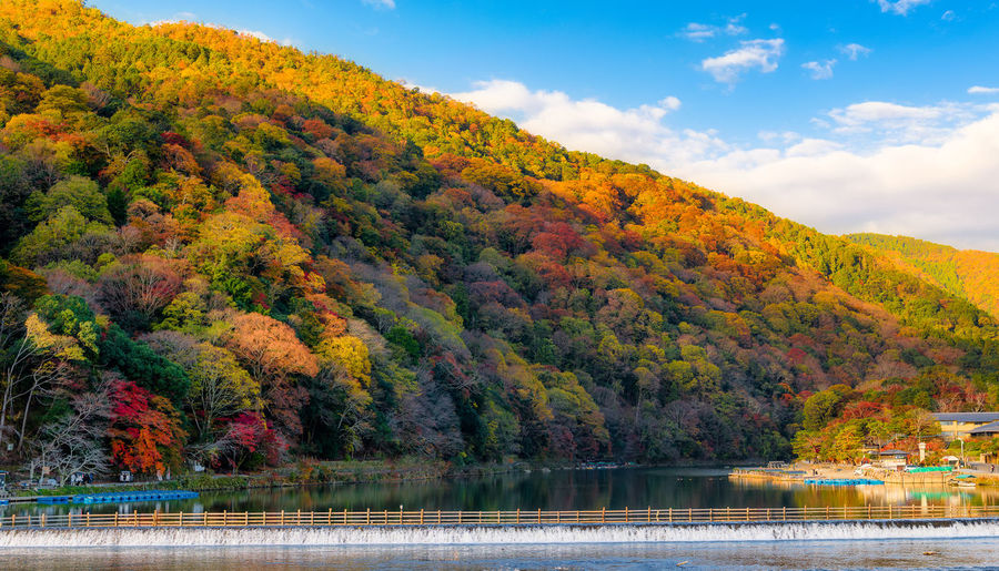 Autumn Tree Change Water Beauty In Nature Plant Lake Scenics - Nature Tranquil Scene Tranquility Nature Day Sky No People Waterfront Non-urban Scene Mountain Orange Color Idyllic Outdoors Autumn Collection Fall Japan Kyoto Arashiyama