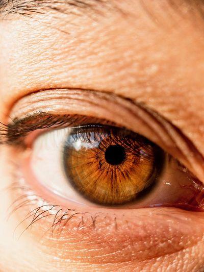 Eye Human Eye Eyesight Sensory Perception Human Body Part Eyelash Body Part Extreme Close-up Adult One Person Looking At Camera Close-up Eyebrow Human Skin Human Face Eyeball Macro Portrait Iris - Eye Skin