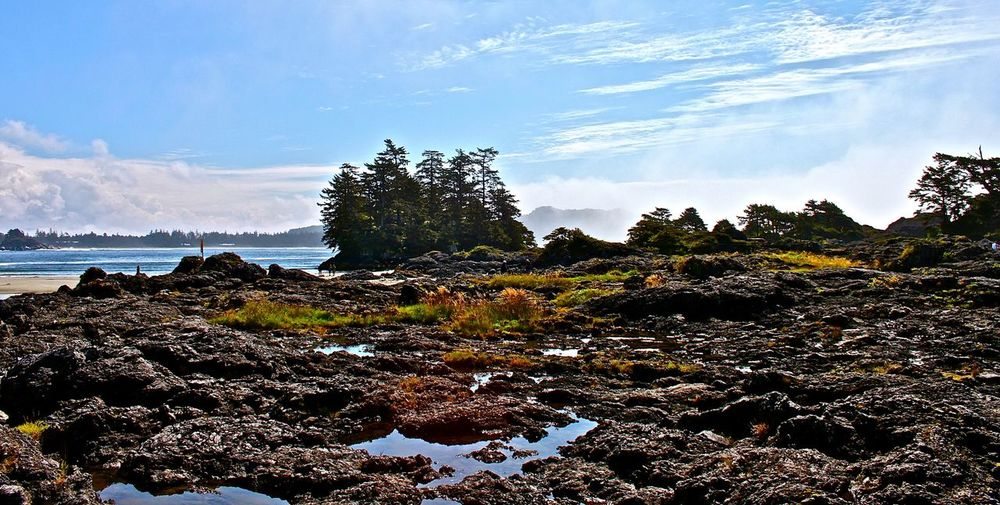 Long Beach, Pacific Rim National Park Vancouver Island Landscape_Collection Beautiful Place Melancholic Landscapes Great Atmosphere Vancouverisland Vancouver Island Long Beach Pacific Rim Great View Fantastic View The KIOMI Collection