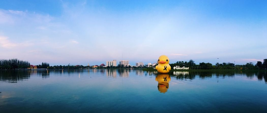 Say hello to a new day Duck Morning Park Udonthani Sky First Eyeem Photo