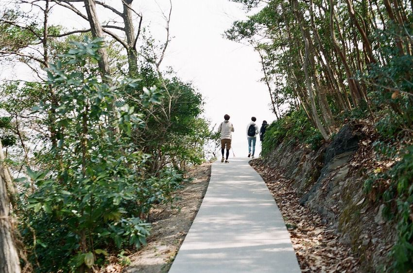 NikonFM2 Filmcamera 35mm Film Walking Tree Nature Outdoors People Film Photography Nikon Japan