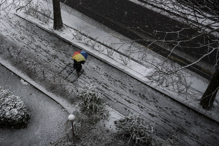 Positivity Adult Alone Black & White Black And White Photography Blackandwhite City Life City Street Coloful Colorful Umbrella EyeEmNewHere High Angle View One Person Outdoors People Rainbow Real People Snow Snow Covered Snow Day Snowing Street Street Photography Streetphotography Umbrella Flying High The Street Photographer - 2017 EyeEm Awards
