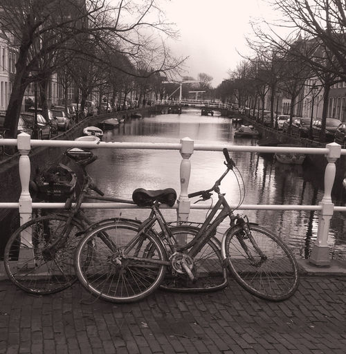 Old bikes removed from the canal and left to be picked up. Converted to Black and white. Absence Art, Image, City, Old, Bare Tree Black And White, Alkmaar, The Netherlands, Old Bikes, Trash, Junk, Canal City Day Empty Mode Of Transport Nature No People Outdoors Parked Parking Sky Stationary Tranquility Tree Water