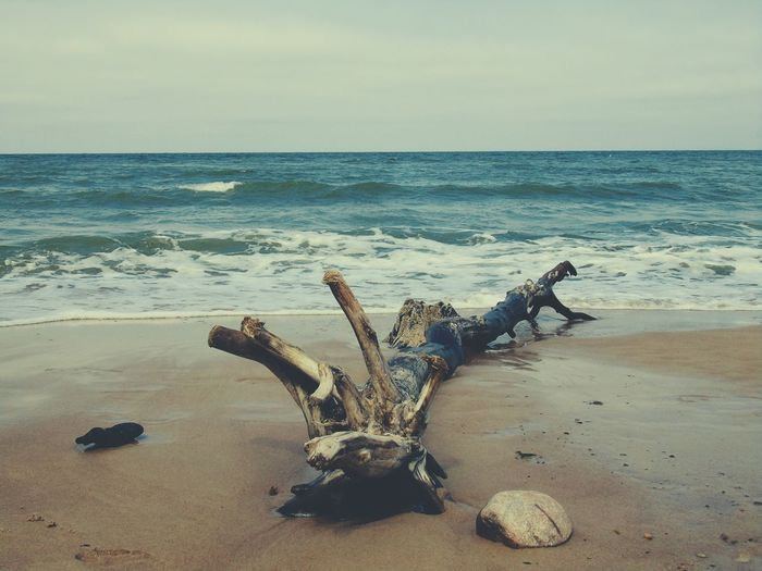 Beachphotography Beach Wood Water Sea Sand Breathing Space Perspectives On Nature