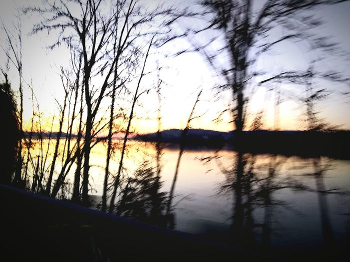 Tree Water Sunset Lake Silhouette Reflection Sky Cloud - Sky Dramatic Sky