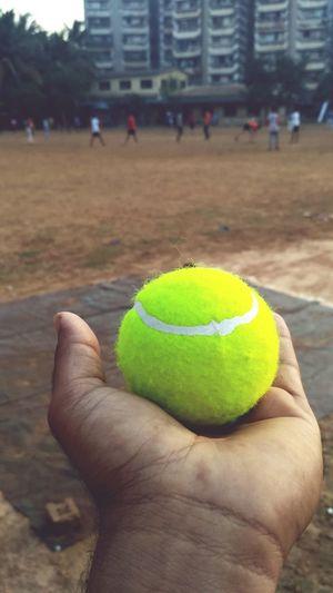 Tennis Ball Cricket Field Ball Hand