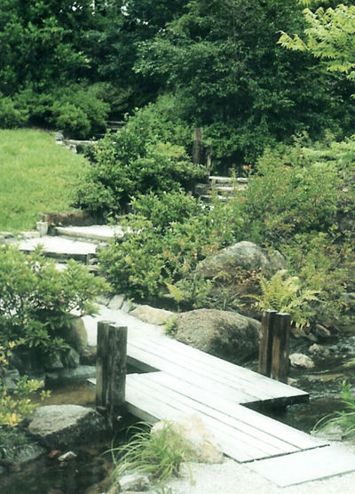 Beauty In Nature Day Green Color Growth Japanese Garden Nature No People Non-urban Scene Outdoors Pathway Tranquil Scene Tranquility Walkway Zigzag
