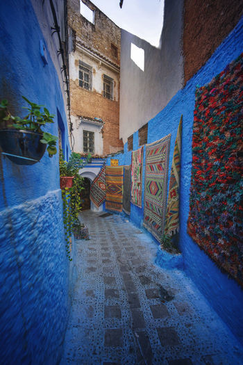 """""""The Blue City"""" We travelled from Sevilla to Tarifa, then took a ferry to Tangier, then a taxi to Chefchaouen, Morocco. EyeEmNewHere a new beginning Chefchaouen Morocco Beauty Blue City Blue Medina Architecture Built Structure Multi Colored The Way Forward Art And Craft Narrow City Wall Footpath Carpet Digital Nomad No People Direction Building Exterior Building Wall - Building Feature Street Residential District House Mural Alley Long"""
