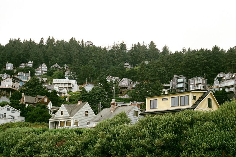 High angle view of trees and houses on hill against sky