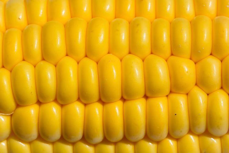 Corn Pattern Pieces Close-up Yellow Fresh Vegetables Fresh Veggy Fresh Corn Color Palette Color Palette Mission Finalists