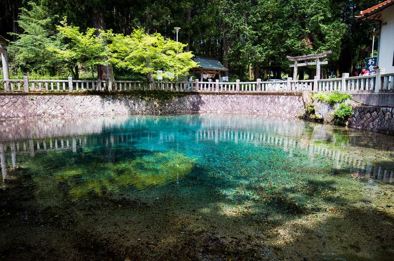 Beppu-Bentenike Japan Yamaguchi_pref 別府弁天池 山口県 美祢市