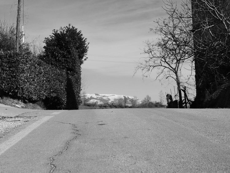 Beauty In Nature Black & White Black And White Blackandwhite Blackandwhite Photography Day Growth Landscape Landscape_Collection Landscape_photography Landscapes Nature No People Outdoors Road Road Roadside Sky The Way Forward Tranquility Tree