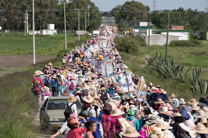 About 20,000 women near Polotitlan Stare of Mexico in their pilgrimage to the Basilica of Guadalupe in Mexico City Storytelling Documentary Mexico Pilgrimage People Large Group Of People Group Of People Crowd Real People Women High Angle View