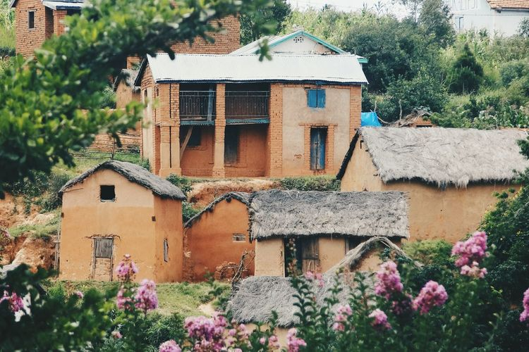 Trano gasy Architecture Built Structure Malagasy Countryside Malagasy House Building Exterior Houses Nature_collection Nature Nature On Your Doorstep Untold Stories Flowers Frame It! Voyage Roadtrip Beauty In Nature