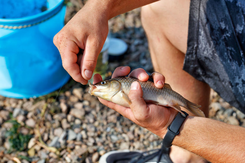 The hands of a young fisherman remove the caught fish from the hook against the blurred background.