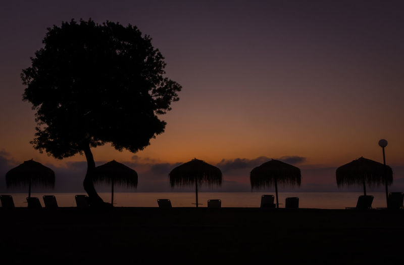 Silhouette trees on beach against sky during sunset