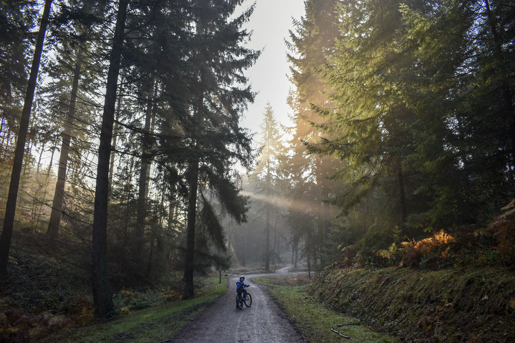 Boy riding bicycle on road amidst trees in forest