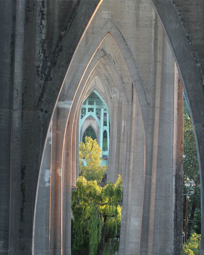 Arch bridge amidst trees and building