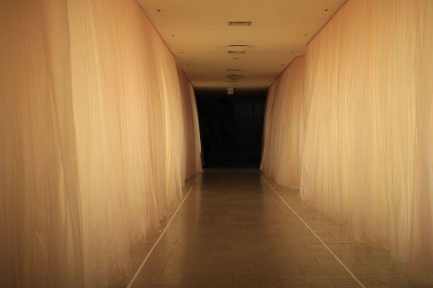 분홍 안에 어둠. 분홍색 어둠 Pink Dark Art MMCA Korea ASIA Tour Trip Travel 국립현대미술관 현대미술관 과천 아트 예술 전시 여행