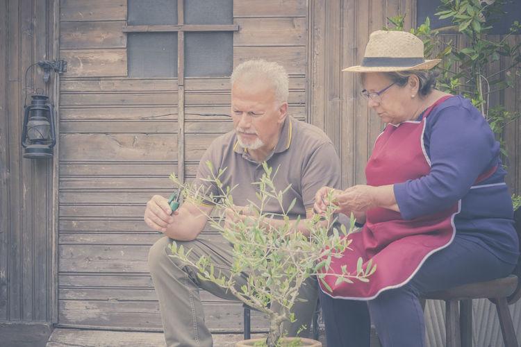 Senior Couple Pruning Plant In Backyard