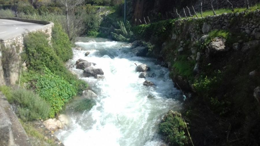 Water Beauty In Nature Plant Flowing Water Motion Scenics - Nature Go Higher Nature Waterfall River Go Higher