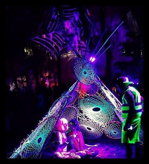Hulaween Dreamcatcher Art Spiritofthesuwannee Spiderweb Trippy Gypsy