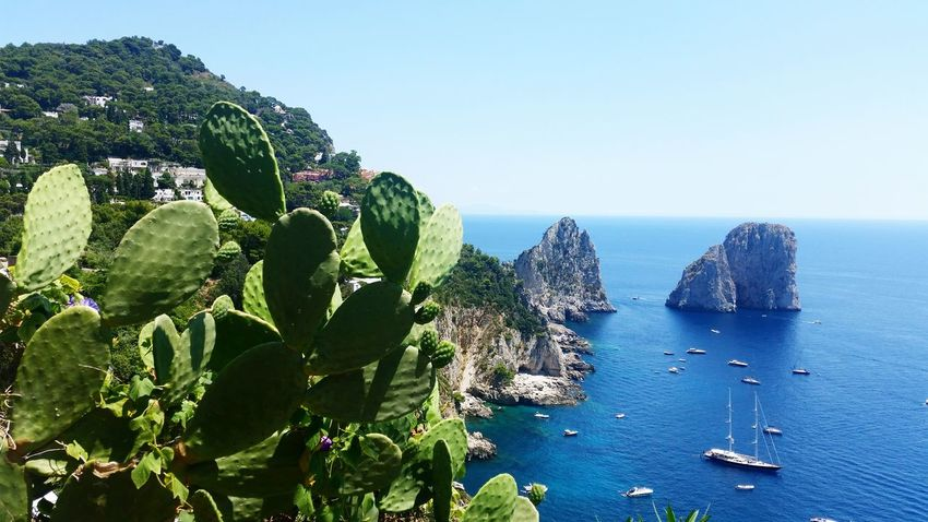 Magic Capri Italy Naples Faraglioni Cactus Boats Landscape Aroundtheworld Sky And Clouds