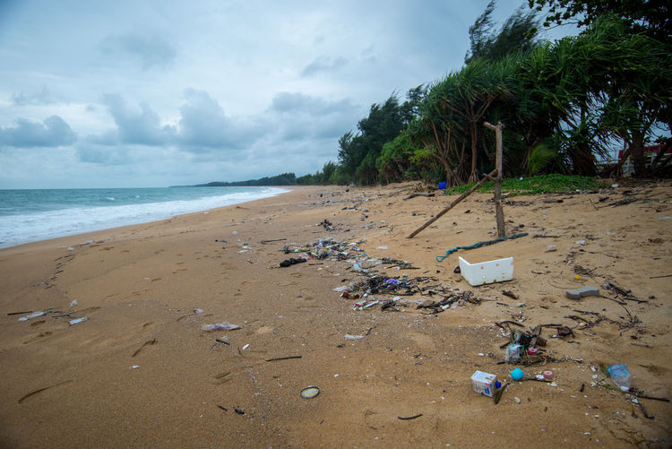 Beach Land Water Sea Sky Sand Cloud - Sky Nature Tree Beauty In Nature Palm Tree Tropical Climate Tranquility Garbage Scenics - Nature Day Tranquil Scene Horizon Over Water Plant No People Outdoors Pollution Bottle Bottle Cap