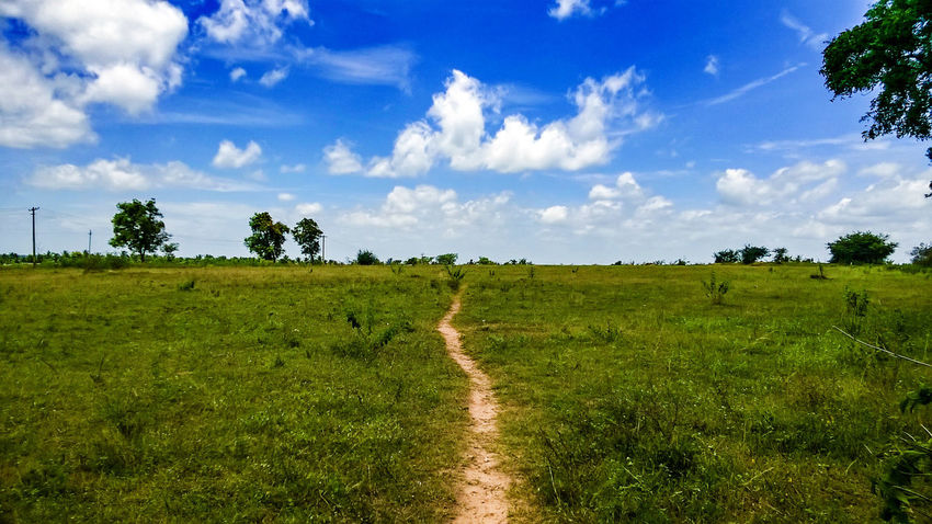 Landscape Cloud - Sky Field Nature Sky Blue Motivation Pathway Pathway To Heaven Horizon Greenery Grass Sunny Day Amazing Beautiful