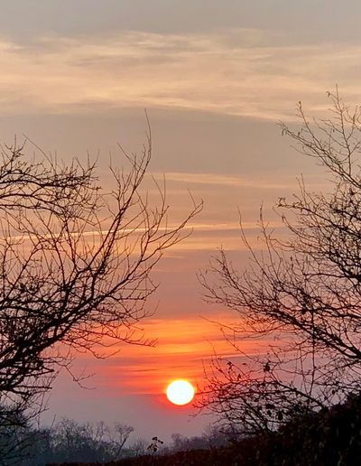 Sunset Sun Beauty In Nature Orange Color Scenics Nature Colour Your Horizn Sky Sunlight Cloud - Sky Tranquility No People Tree Tranquil Scene