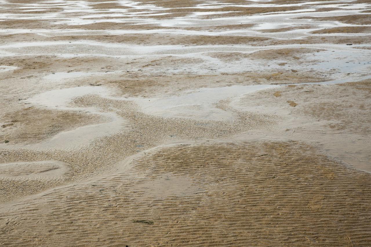 HIGH ANGLE VIEW OF SAND DUNES ON BEACH