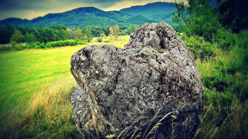 Beauty In Nature Grass Grassy Green Color Hill Male Karpaty Mountain Nature Rock Rock - Object Rock Formation Sky Tree