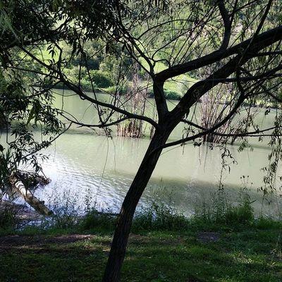 Lagodisantamaria Montagna Emiliromagna Lake love_Emilia_Romagna igersemiliromagna