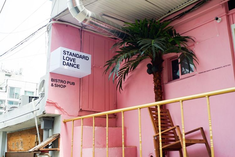 Pink Pink Color Palm Trees Market Check This Out Taking Photos Enjoying Life South Korea Street Streetphotography