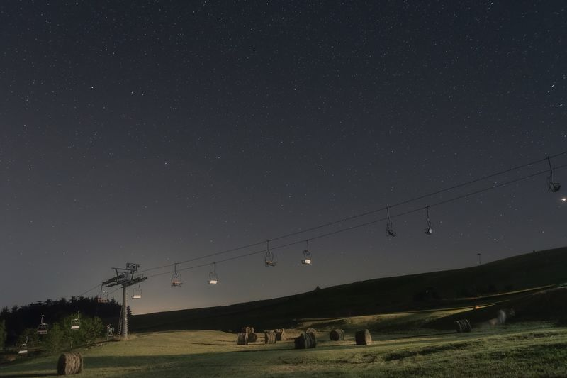 Cow ghost Night Sky Star - Space Scenics - Nature Beauty In Nature Space Star Land Plant Nature Field Domestic Animals Astronomy Livestock Tranquility Star Field Landscape