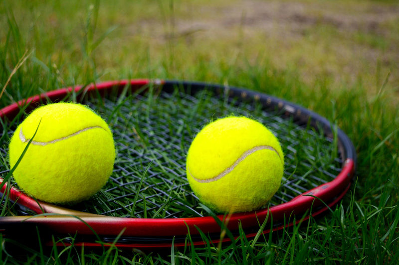 yellow tennis balls with tennis racquet on the green grass Sport Tennis Ball Tennis Grass Ball Yellow Nature Sports Equipment Racket Active Lifestyle  Recreation  Play Competition Design Equipment Lifestyle Game Gear Leisure Summer Racquet Balls Close-up Outdoors Green Color