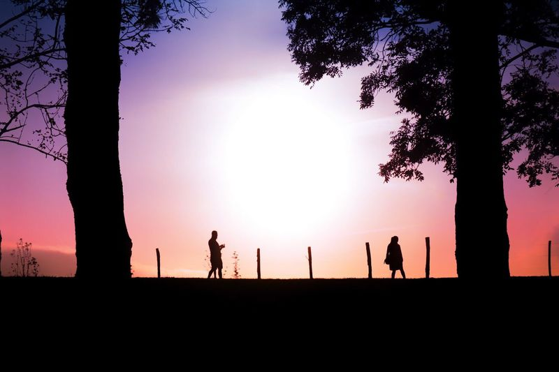 Silhouette Sunset Real People Tree Lifestyles Sky Leisure Activity Beauty In Nature Nature Outdoors Men Scenics Playing One Person Day People Nature Landscape Traveling Travel Water Reflection Light And Shadow Colors Beauty In Nature
