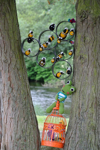Bees Frog Art Bird Cage Outdoors Tree Trunk