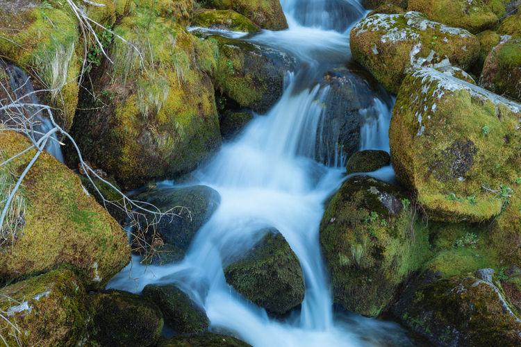 Stream amidst mossy rocks