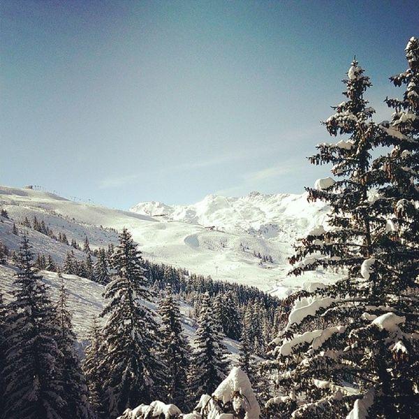 Ski Meribel Sapin Neige beautiful Day happy