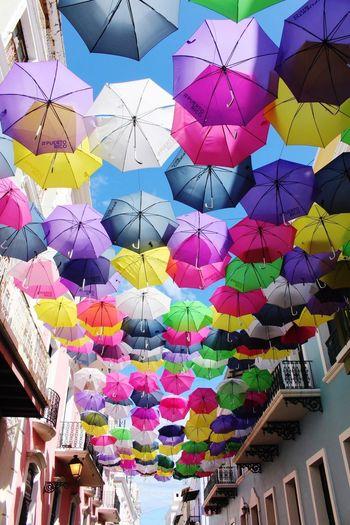 umbrella sky