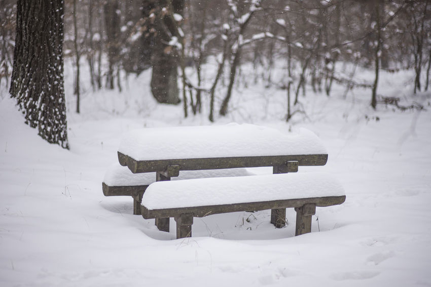 Bench Beauty In Nature Cold Temperature Landscape Nature Outdoors Scenics Snow Snow Covered Landscape Table And Bench Tranquil Scene Weather White Color Winter Shades Of Winter