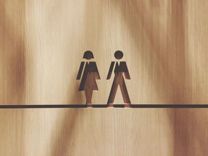 Female and male symbol on door