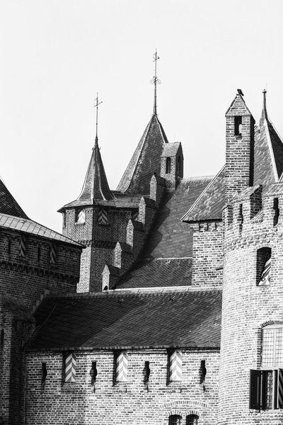 5 Little Birds Architectural Detail Castle Muiderslot Monochrome Blackandwhite Monochrome_Monday Past Glory