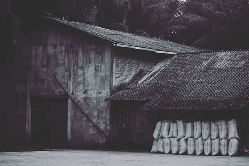 Family's barn.. VSCO Vscocam Vscogood Folk Folk_portraits Folkindonesia Village Hometown Afternoon
