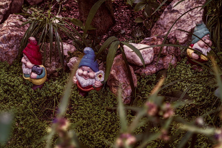 Elf Garden Dwellers Grass And Stones Growth Nature No People Three Dwarfs Tranquility