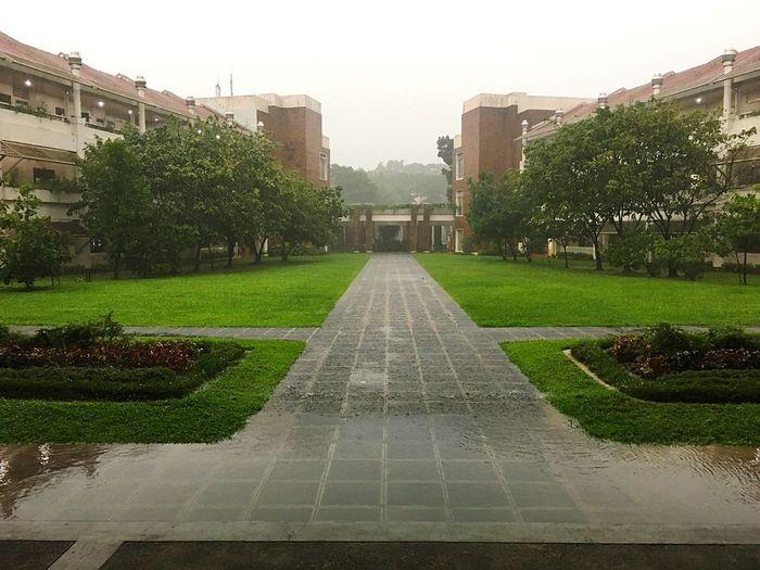 Let the rain pour Rainy Days Rain Dour Building Exterior Grass Dark School School Life  University College Life College